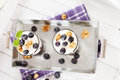 Two yoghurt desserts with blueberries from top aside on a metal tray white wood Royalty Free Stock Photo