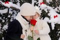 Two young children with red rose Stock Photography