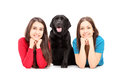 Two young females lying and posing with a dog Royalty Free Stock Photos