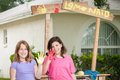 Two young girls painting a lemonade stand sign one with her hand painted yellow and the other painted red show off the paint on Stock Image