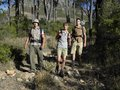Two young men and a young woman hiking women in the forest Royalty Free Stock Photography