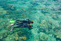 Two young snorkelers discover reef sunny summer day Royalty Free Stock Photo
