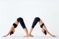 Two young women doing yoga asana Downward Facing Dog