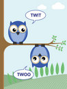 Twoo do Twit Fotos de Stock
