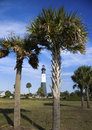 Tybee Island Lighthouse Royalty Free Stock Photo