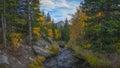 Tyndall Creek in autumn