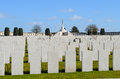 Tyne cot war graves at Royalty Free Stock Photo
