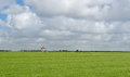 Typical Dutch landscape with old windmill Royalty Free Stock Photo