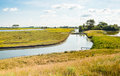 Typical dutch polder landscape in the summer season old with creeks and many flowering wild plants on a sunny day Royalty Free Stock Image