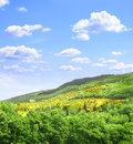Typical Italian landscape Royalty Free Stock Photo