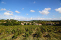 Typical landscape in Provence , France with vineyard and small village Royalty Free Stock Photo