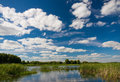 Typical summer lake scene, Belarus.Summer landscape with forest lake and blue cloudy sky. Summer landscape with Lake, beautiful bl Royalty Free Stock Photo