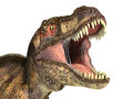 Tyrannosaurus rex dinosaur photorealistic representation head scientifically correct close up with open mouth on white background Royalty Free Stock Photography
