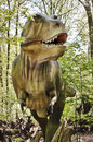 Tyrannosaurus rex dinosaur real size picture of in forrest Stock Images