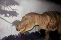 Tyrannosaurus rex model of a Royalty Free Stock Image