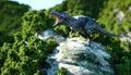 Tyrannosaurus Rex on the rocky cliffs. prehistoric nature. 3d rendering.