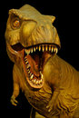 Tyrannosaurus rex statue was one of the largest land carnivores of all time Stock Photo