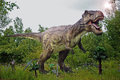 Tyrannosaurus rex tyranosaurus sculpture in live size Royalty Free Stock Photography