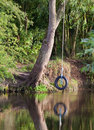 Tyre rope swing on river Royalty Free Stock Photography