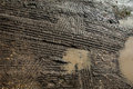 Tyre tracks in wet mud Royalty Free Stock Photo