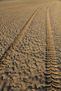 Tyre tracks in wet sand Royalty Free Stock Photography