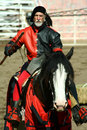 U.S./International Jousting Championship Royalty Free Stock Images