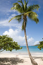 U.S. Virgin Islands. Stock Photo