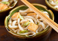 Udon Noodles with Tofu and Green Onion Royalty Free Stock Photo