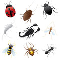 Ugly buglies collection of creepy crawly insects Stock Photos