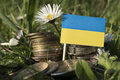 Ukraine flag with stack of money coins with grass Royalty Free Stock Photo