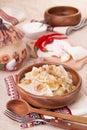 Ukrainian dumplings with stewed cabbage Stock Image