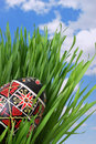 Ukrainian Easter Egg in the Grass Stock Photography