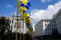 Ukrainian flag Royalty Free Stock Photo