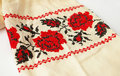 Ukrainian floral cross-stitch Royalty Free Stock Photo