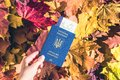 Ukrainian passport with boarding pass in the woman hand maple leaves background in the autumn forest. Travel Concept. Top view. Royalty Free Stock Photo
