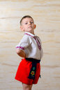 Ukrainian talented boy posing with raised arms and an artistic attitude while wearing pride a traditional folk costume Royalty Free Stock Photography