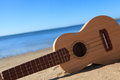 Ukulele on a beach Stock Photography