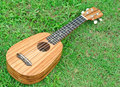 Ukulele on green grass Royalty Free Stock Photo