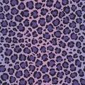 Extremo violeta patrón