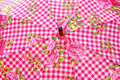 Umbrella parasol gingham pattern photo of an with pink floral ideal for background Stock Photography