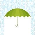 Umbrella and rain F