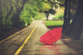 Umbrella on a rainy autumn day Royalty Free Stock Photo