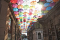 Umbrellas Colorful