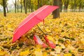 Umrella and shoes woman pink pink umbrella on fall leafs Stock Images