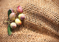 Un fragment d'un sac noué avec des olives Photographie stock