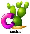 Una lettera c per il cactus Fotografia Stock