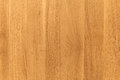 Uncolored beech wooden board pattern Royalty Free Stock Photo