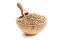 Uncooked buckwheat in wooden bowl Stock Images