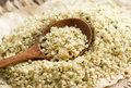 Uncooked hemp seeds with a spoon pile of close up Stock Photography