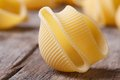 Uncooked italian pasta lumaconi on the table macro horizontal Royalty Free Stock Photos